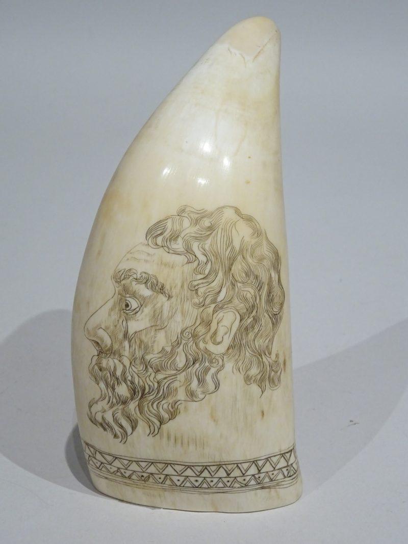 19th century scrimshaw on Neptunus