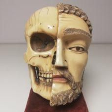 Memento mori ivory head