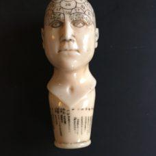 An Ivory Phrenology Head Walking Cane Handle