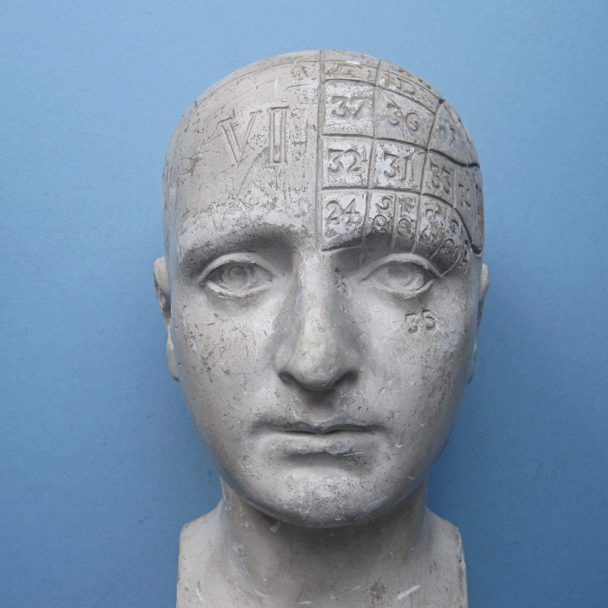 FOWLER & WELLS Variant Phrenological Head
