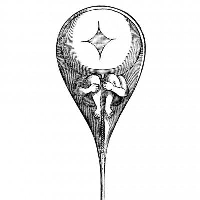 Le Zograscope